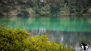 Warna lake, Indonesia