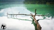 Telaga Warna (The colorful lake), Indonesia